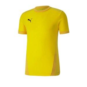 puma-teamgoal-23-trikot-kurzarm-gelb-f07-fussball-teamsport-textil-trikots-704171.png