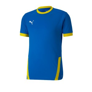 puma-teamgoal-23-trikot-kurzarm-gelb-f16-fussball-teamsport-textil-trikots-704171.png