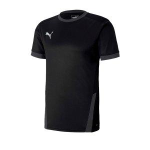 puma-teamgoal-23-trikot-kurzarm-grau-f03-fussball-teamsport-textil-trikots-704171.png