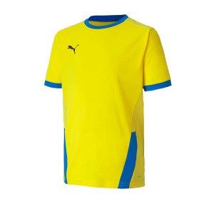 puma-teamgoal-23-trikot-kurzarm-kids-blau-f17-fussball-teamsport-textil-trikots-704160.png