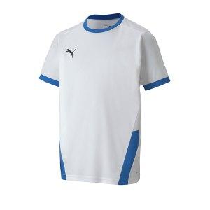puma-teamgoal-23-trikot-kurzarm-kids-weiss-f12-fussball-teamsport-textil-trikots-704160.png