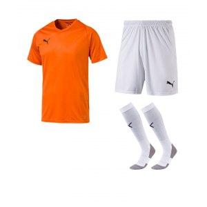 puma-trikotset-liga-core-orange-f08-trikot-short-stutzen-teamsport-ausstattung-703509.png