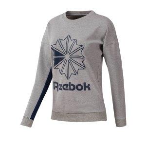 reebok-classics-ft-big-logo-sweatshirt-damen-grau-lifestyle-freizeit-strasse-textilien-sweatshirts-dt7243.png