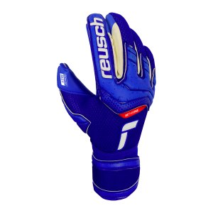 reusch-attrakt-gold-x-tw-handschuh-f4010-5170945-equipment_front.png