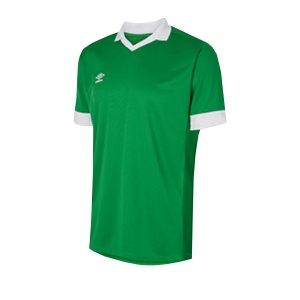 umbro-club-essential-tempest-trikot-gruen-fehe-fussball-teamsport-textil-trikots-umtm0322.png