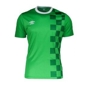 umbro-stadion-trikot-kurzarm-rot-fehe-fussball-teamsport-textil-t-shirts-64840u.png
