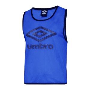 umbro-training-bib-kennzeichnungshemd-blau-f187-umtm0460-equipment_front.png