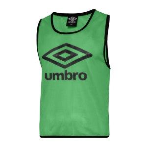 umbro-training-bib-kennzeichnungshemd-gruen-f127-umtm0460-equipment_front.png