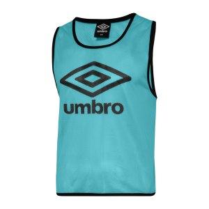 umbro-trainnig-bib-kennzeichnungshemd-blau-feqb-umtm0460-equipment_front.png