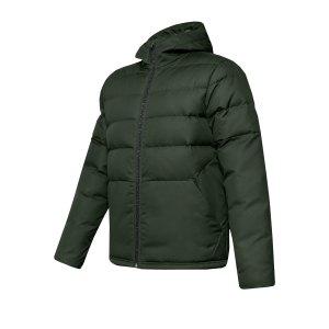 under-armour-sportstyle-core-hoody-gruen-f310-fussball-textilien-sweatshirts-1342693.png