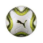 PUMA FINAL 3 Tournament Trainingsball F01
