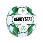 Derbystar Planet APS v21 Spielball Weiss Grün F24
