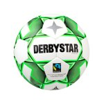 Derbystar Omega APS V20 Trainingsball Weiss F140