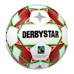 Derbystar Alpha TT v20 Trainingsball F134
