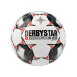 Derbystar Bundesliga Magic S-Light 290 Gramm Weiss F123