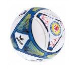 Erima Trainingsball Eintracht Braunschweig