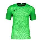 Nike Promo TW-Trikot kurzarm Gelb F719