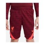 Nike FC Liverpool Strike Short Kids F677