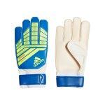 adidas Predator Training TW-Handschuh Rot Schwarz