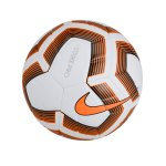 Nike Strike Pro Team Trainingsball Weiss F100